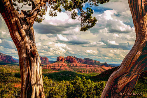 """Cloud Gathering"" • Sedona, AZ Lnadscape Photograph by Susie Reed"